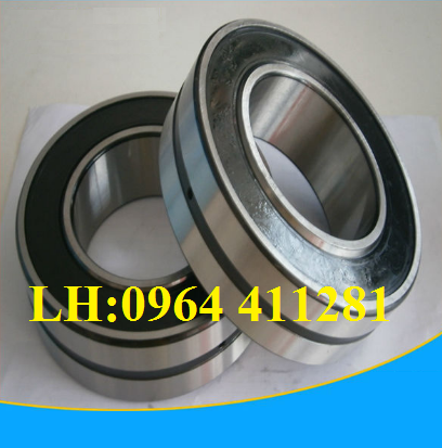 roller bearing BS2-2205-2CS-VT143-SKF